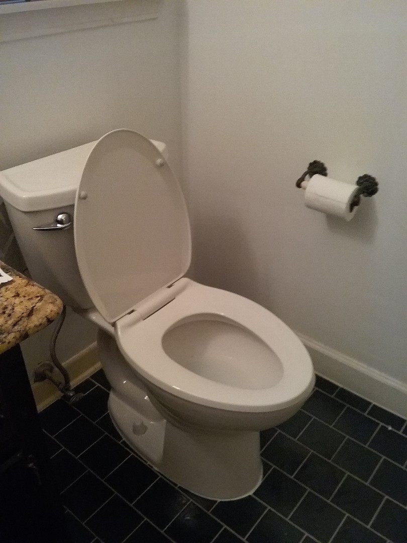 Pelham, AL - Plumbing and gas. Installed new toilets