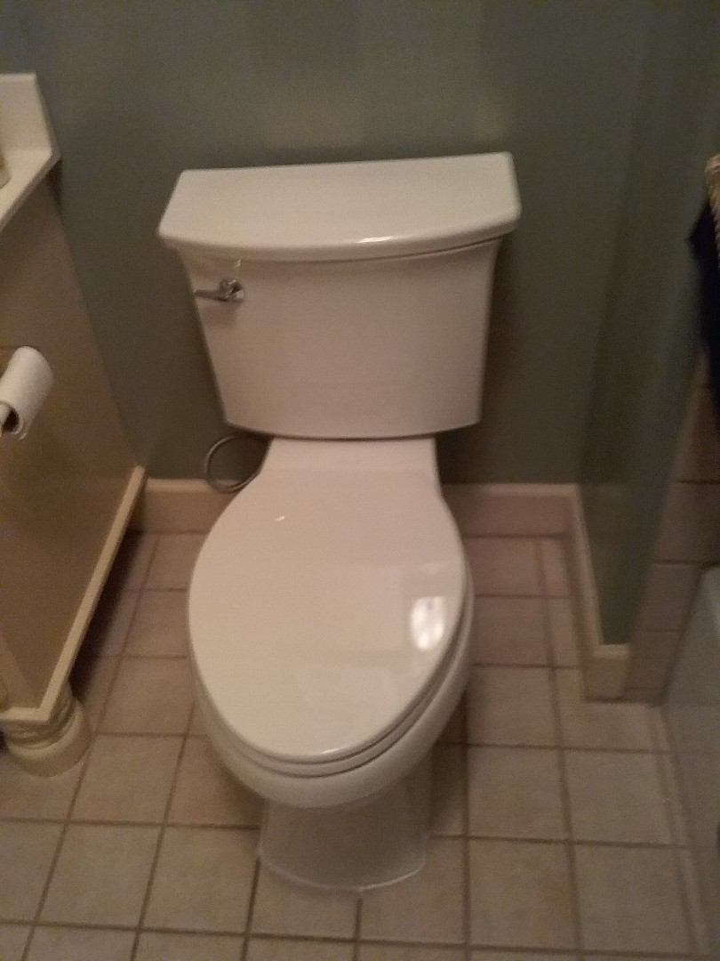 Hoover, AL - Plumbing and gas. Installed new toilet