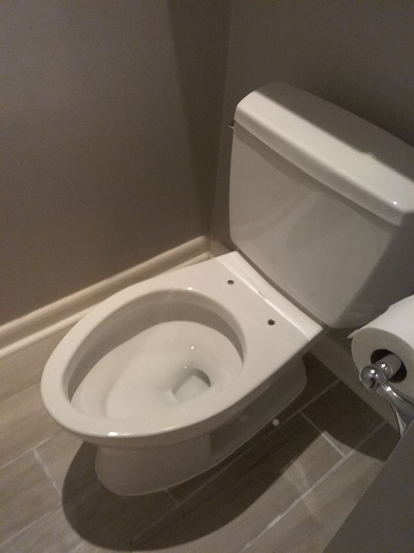 Montevallo, AL - Plumbing and gas. Installed new toilet
