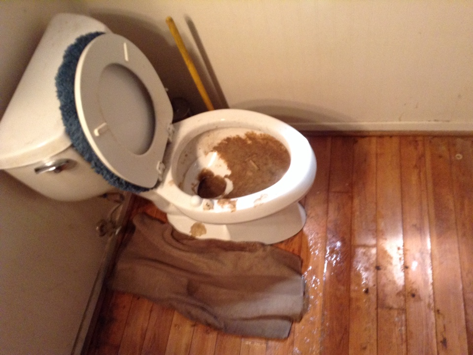 Rancho Cucamonga, CA - Toilet soft stoppage.  With water damage.