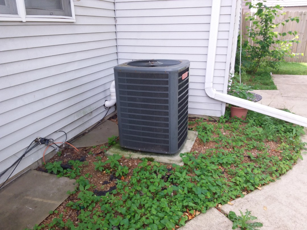 Bloomingdale, IL - Cleaned and checked