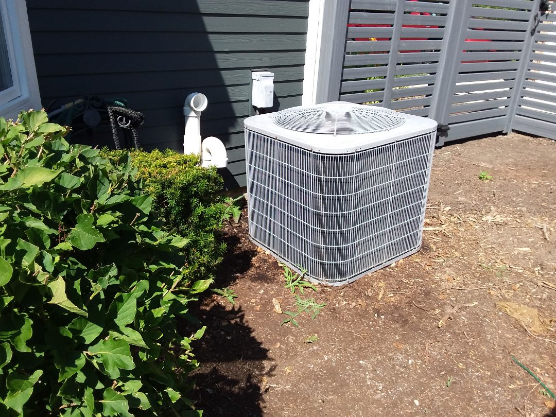 Roselle, IL - Cleaned and checked a/c
