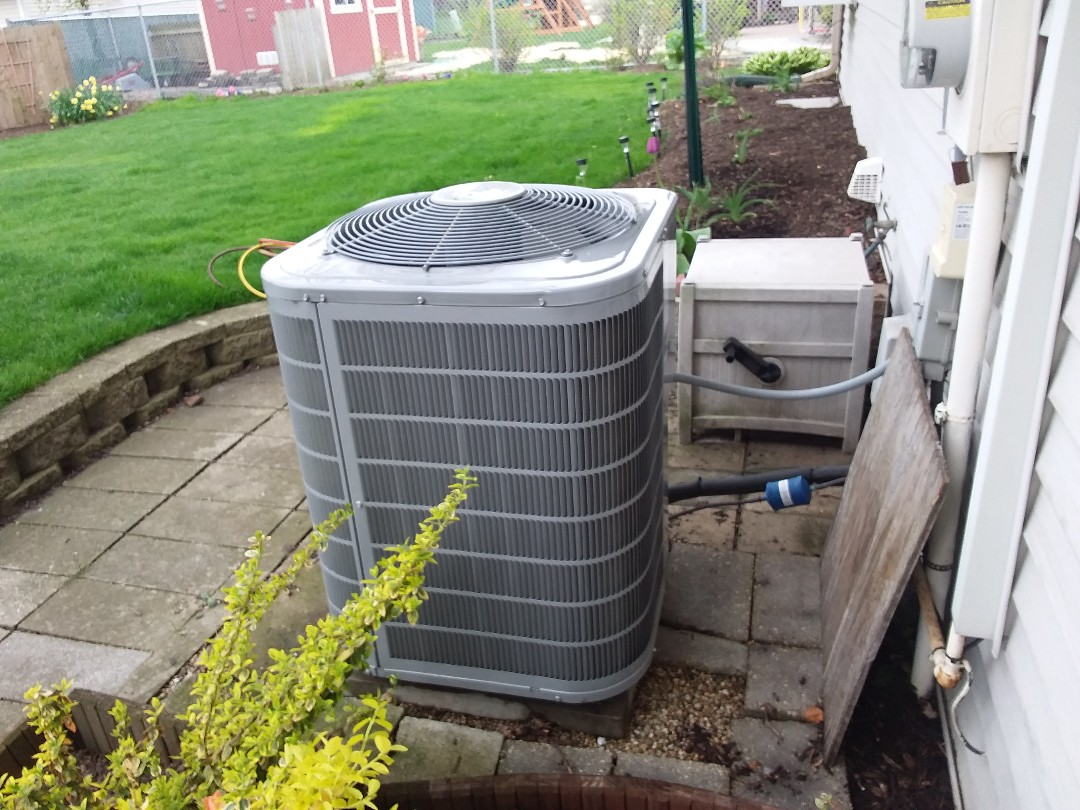 Palatine, IL - Cleaned and checked a/c
