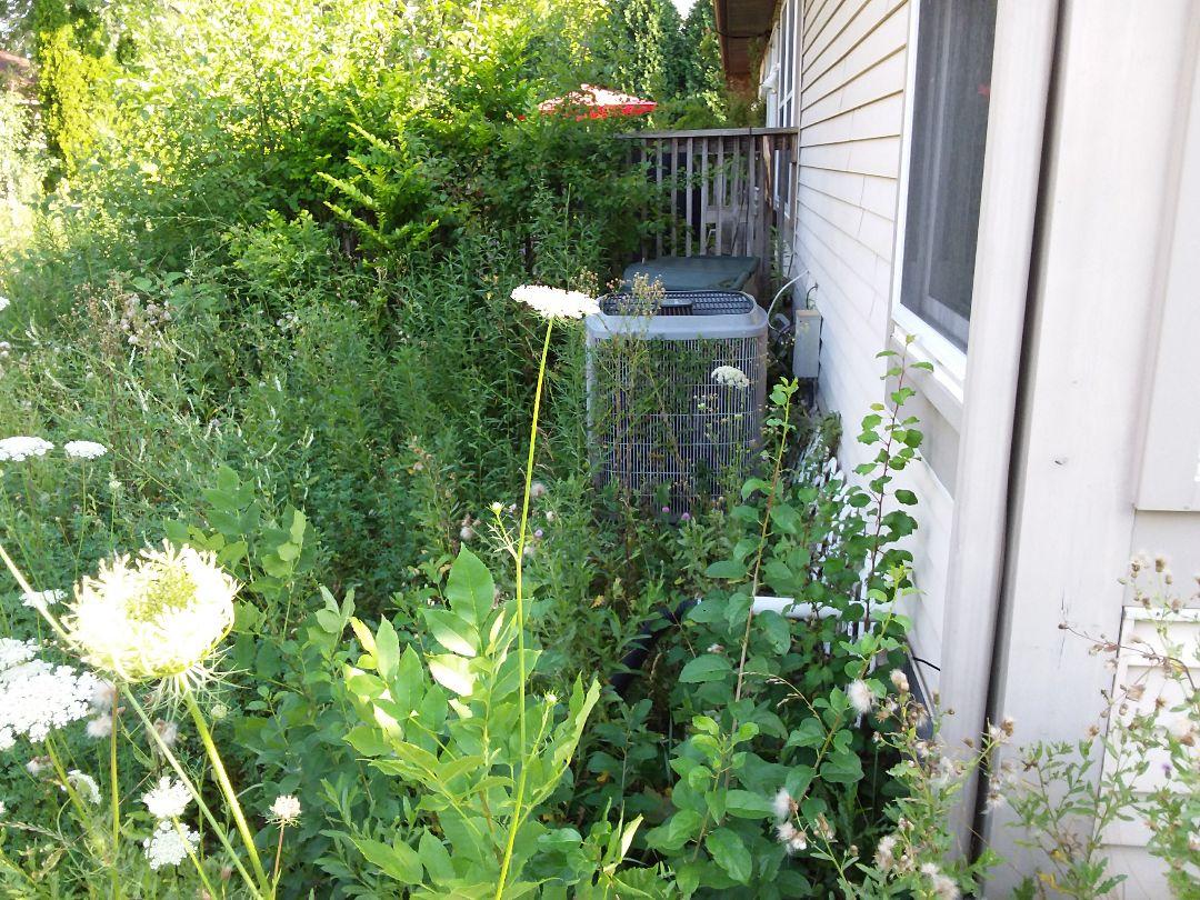 Buffalo Grove, IL - Clean and check A/C