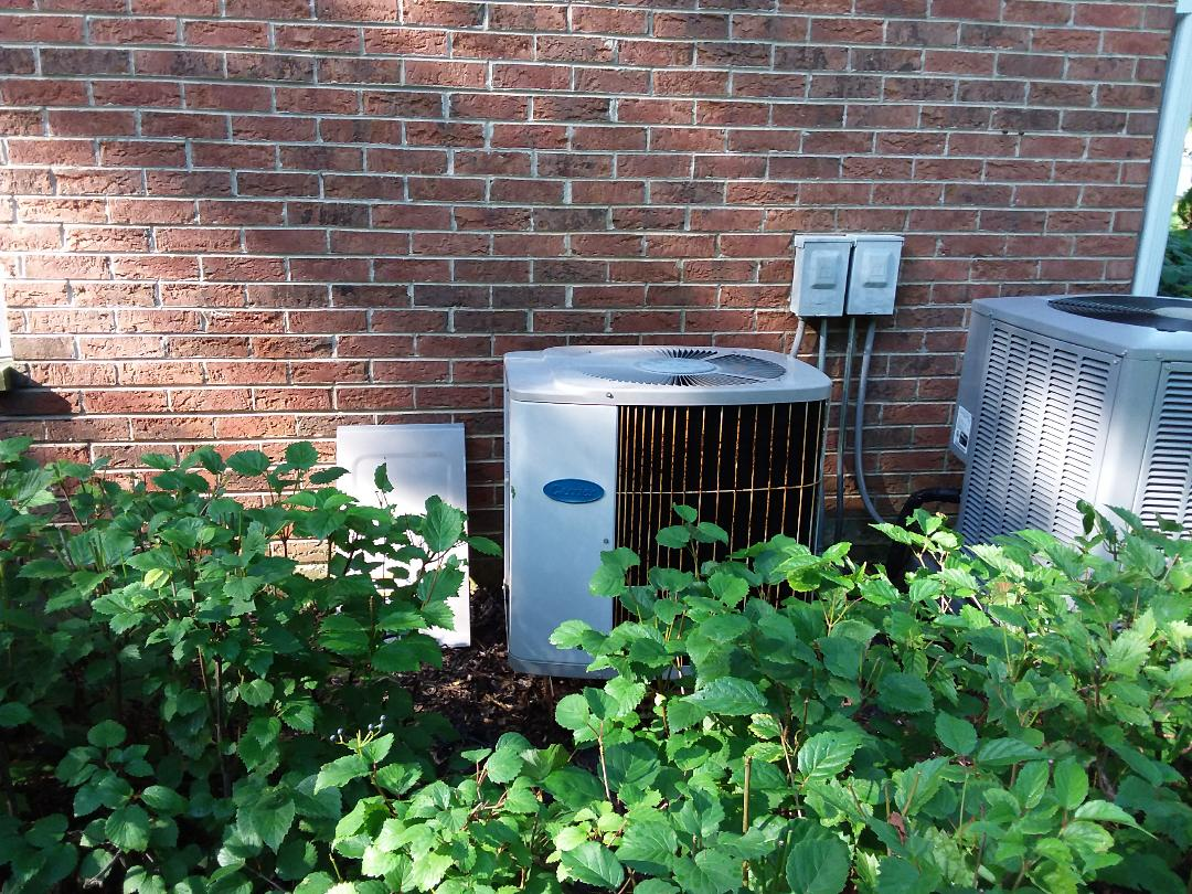 Mount Prospect, IL - Clean and checked A/C and furnace