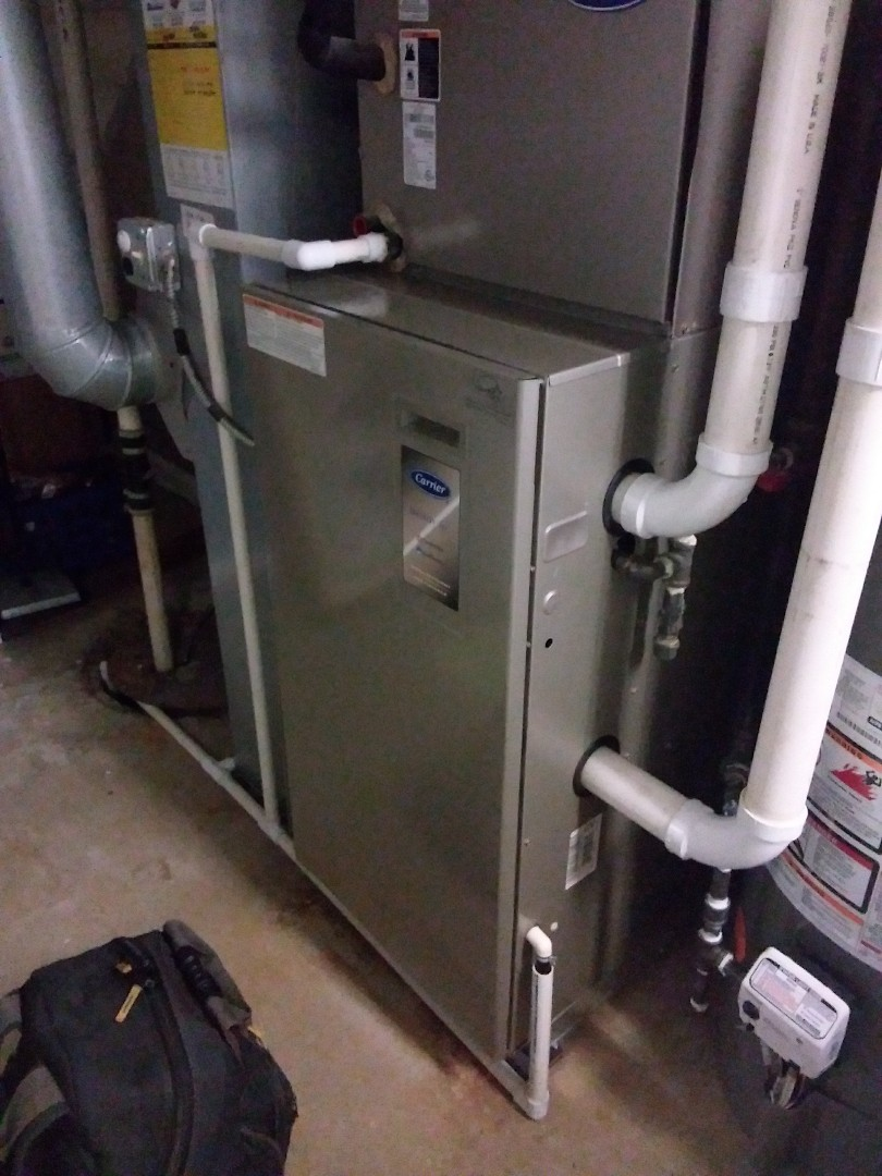 Wheaton, IL - Maintaining a carrier furnace