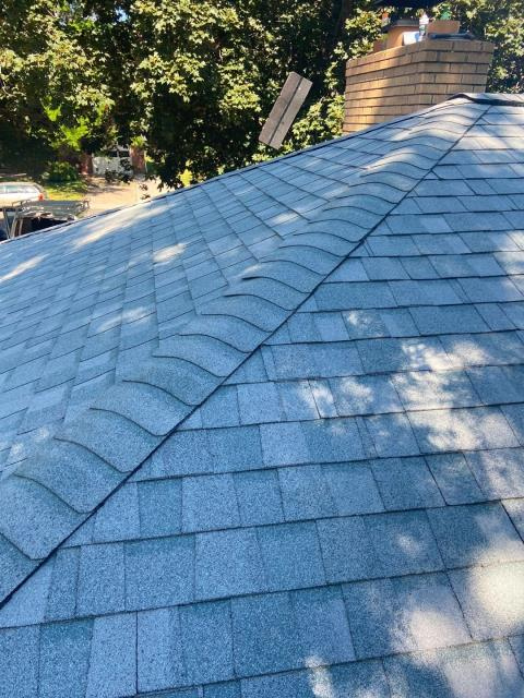 Fort Collins, CO - Do you see it?  Funny photo of a flying shingle on this roof in Fort Collins.  The shingles that we installed are CertainTeed Northgate Class IV Impact Resistant shingles.  The shingle color is Silver Birch.
