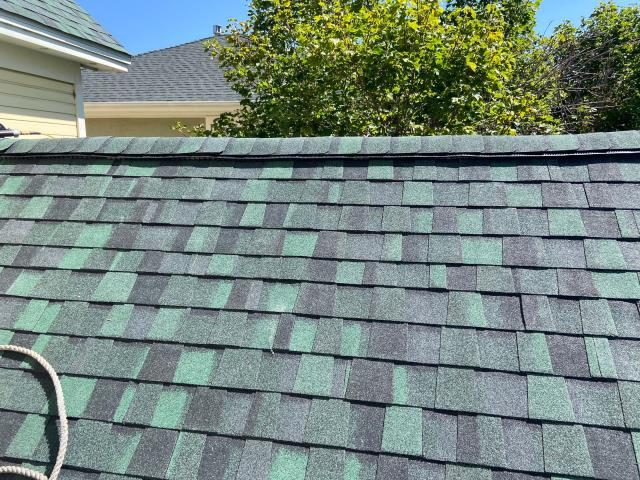Boulder, CO - Green is not for everyone, but I really like it on homes with cedar siding and many people really like it with yellow siding, like on this home in Boulder.  These shingles are CertainTeed Northgate Class IV Impact Resistant Shingles in Hunter Green.