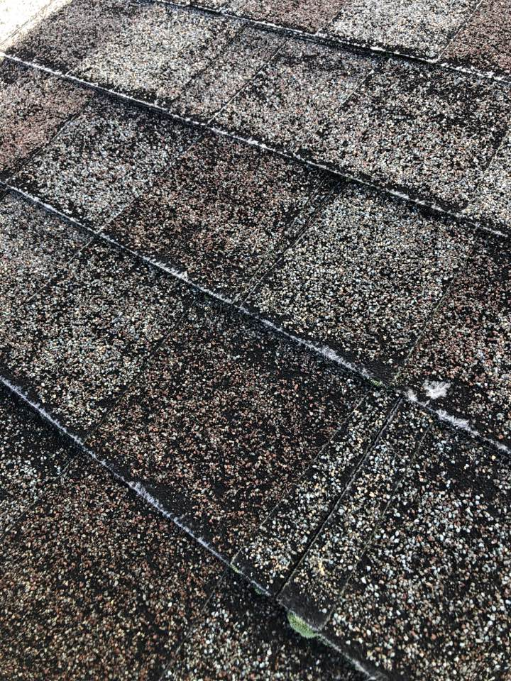 Woodinville, WA - When your roofing shingle start to lose their granules and show through to the fibers, they are no longer protecting your house from the elements and need to be replaced.