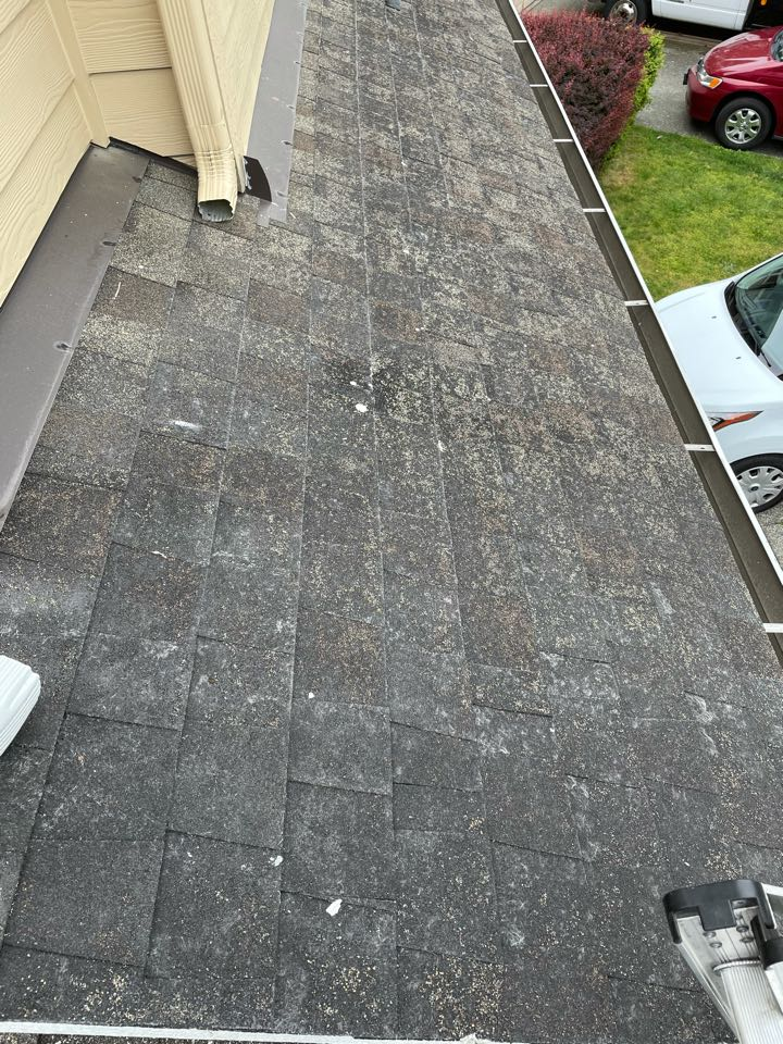 Lynnwood, WA - When the granules are gone on your roofing shingles they are no longer protecting your house from the elements. Call Klim Roofing for your free re-roof estimate.