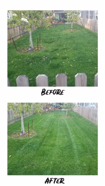 Austin, TX - Affordable grass cutting and lawn care service near UT Austin. Provide estimate for yard work and lawn mowing.