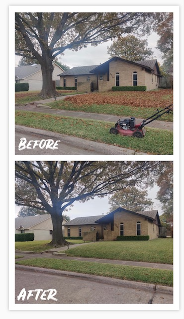 Austin, TX - We can assist with fall leaf removal and leaf clean up with mulching lawnmowers in the Austin areas around South Congress and surrounding cities.