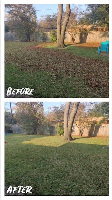 Dallas, TX - Our crews are avaliable to remove and mulch the leaves from fall and winter trees.