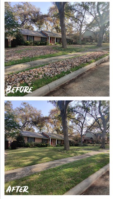 Manchaca, TX - We can help with leaf removal in the fall months and mowing and affordable lawn maintenence near the Waterloo Ice House.