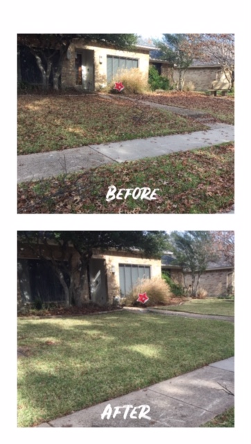 Plano, TX - Residential mowing and yard clean up and leaf removal near CVS. Mowing and bush trimming around the backyard.