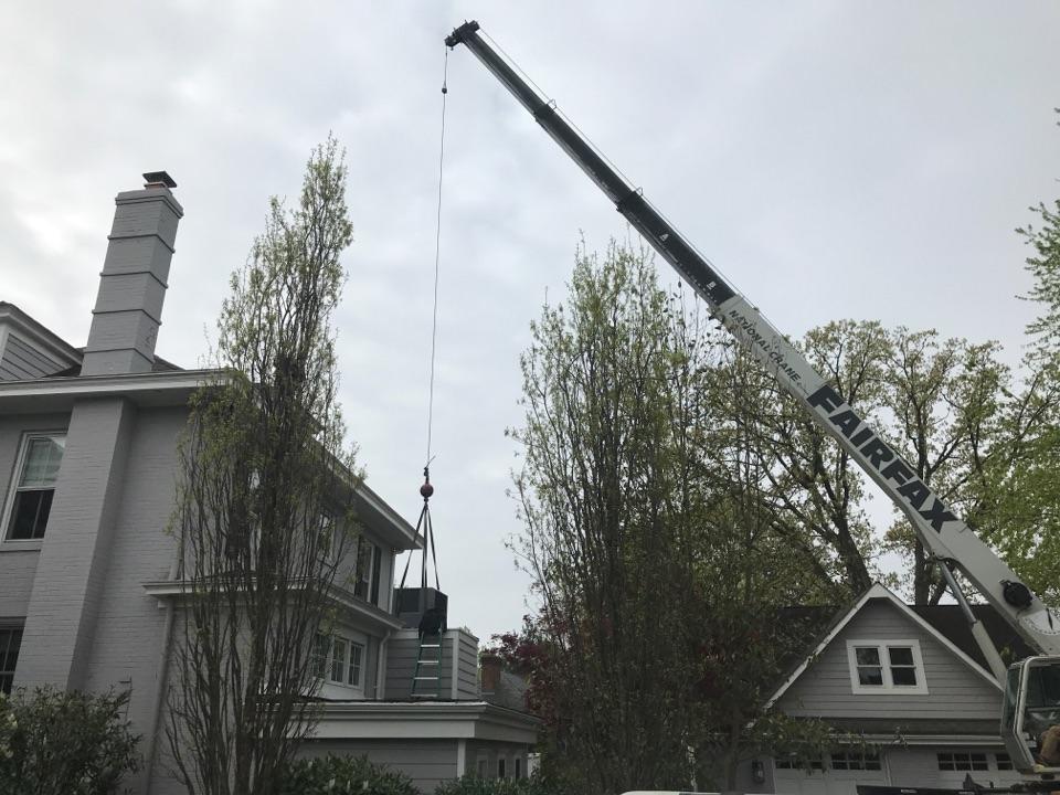 Alexandria, VA - Air conditioning season arrives and so do the cranes!