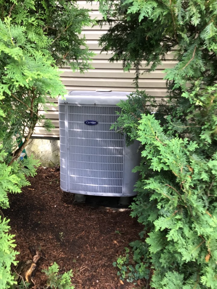 Aberdeen, MD - No cooling on a 12 yr old carrier Heat pump