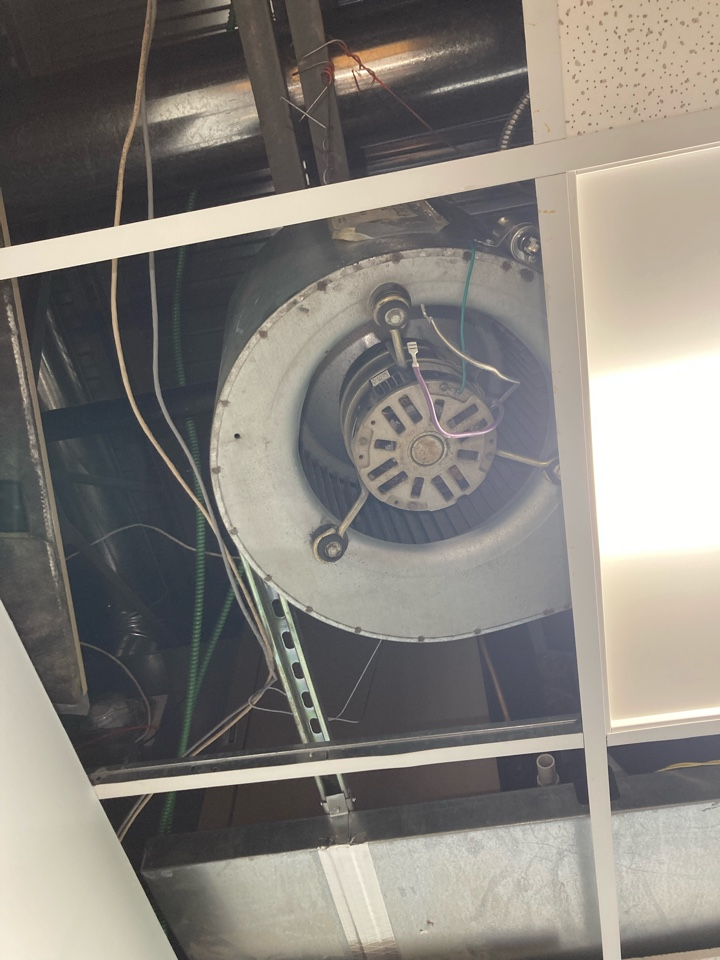 Rosedale, MD - Replace blower motor York air handler