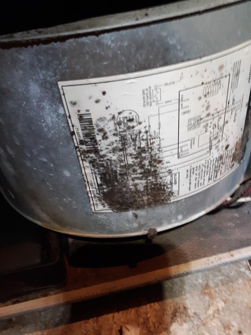 Phenix City, AL - Service call. Nordyne air repair. High power bills. Heater running to long. What's growing in my ac? Freon leak.