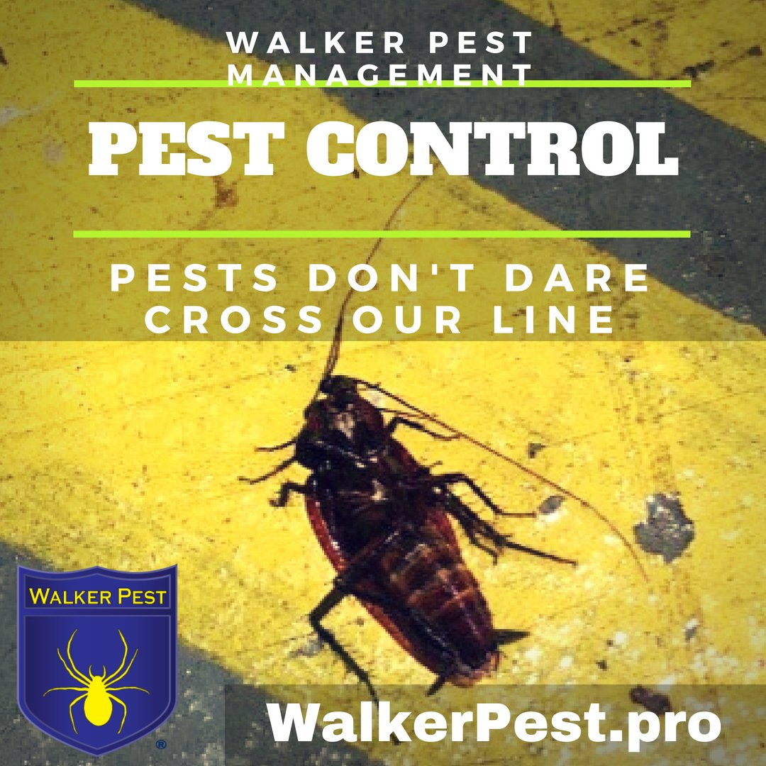 Commercial Pest Control Service for prevention of fall pests. Walker Pest Management 866-442-7377