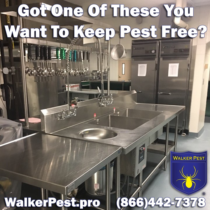 Commercial Pest Management in Williamston SC - Walker Pest Management - 866-442-7378