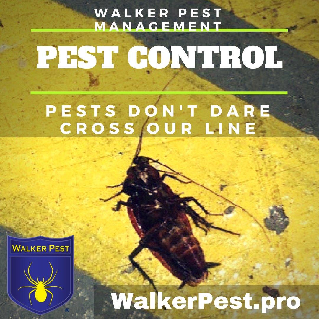 Spartanburg, SC - Restaurant pest control services - Walker Pest Management