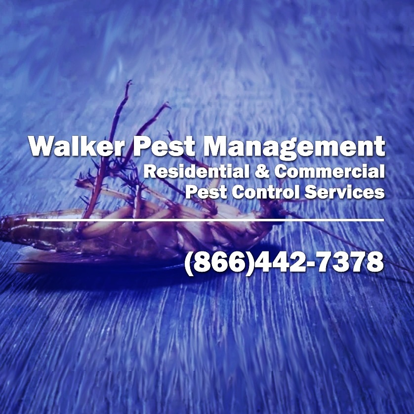 Spartanburg, SC - Restaurant Pest Control service Spartanburg SC - Walker Pest Management