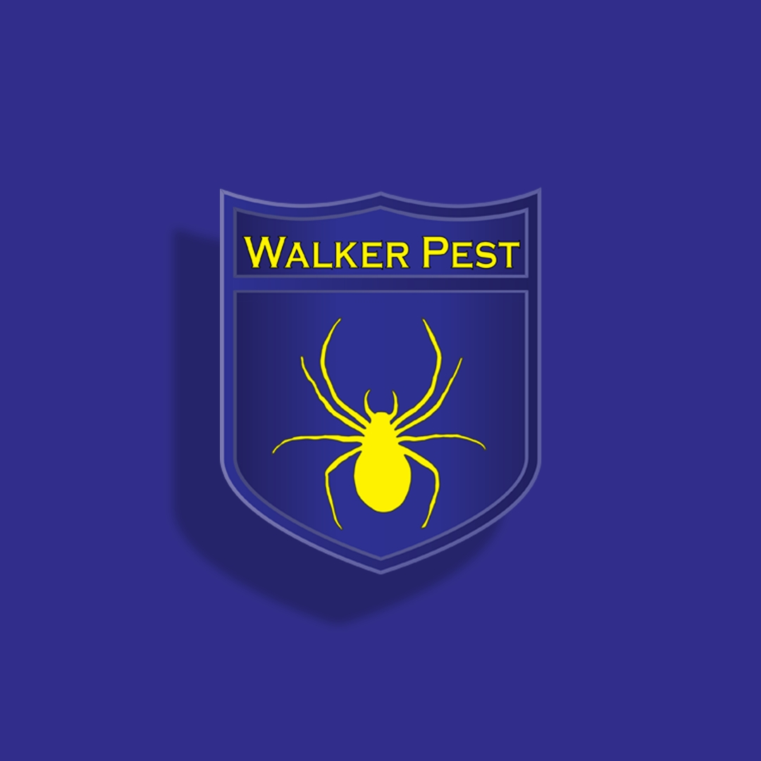 Commercial Pest Control Service for restaurant - Walker Pest Management