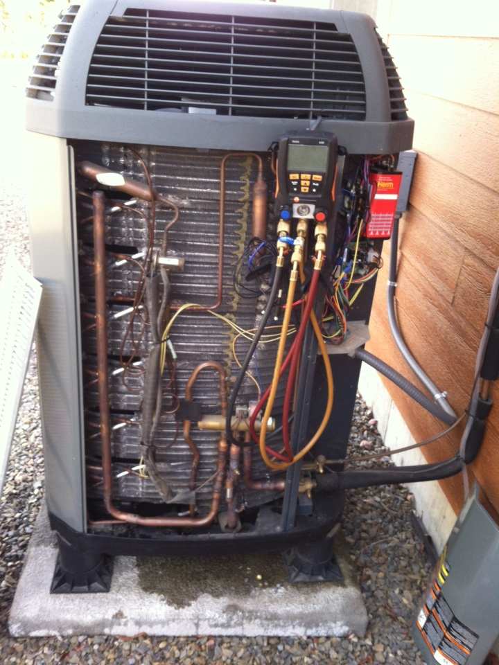 Sagle, ID - Performed heat pump maintenance.  Performed maintenance on a Trane furnace and a Navien tankless water heater.
