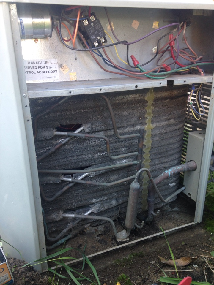 Sagle, ID - Replaced a contactor on a Trane air conditioner, and doing a preventive maintenance on the air conditioner and furnace.