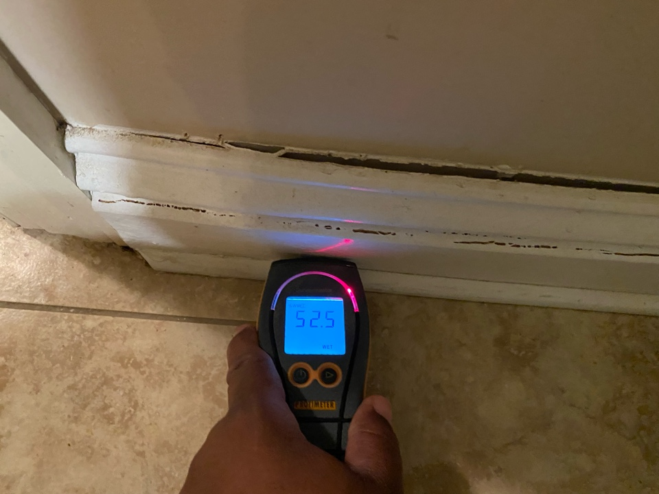 Millbrook, AL - Affected baseboard found during Protek's moisture mapping!