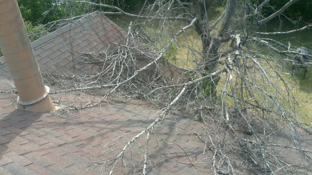 Looking at a roof with tree damage and missing shingles