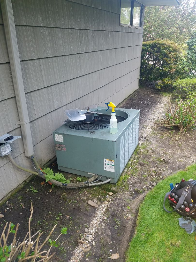 Great Neck, NY - Rheem R22 3-1/2 ton Air Conditioning Maintenance Inspection  Change Merv-16 Air Filter Media