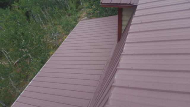 Repair Leaking Metal Roof