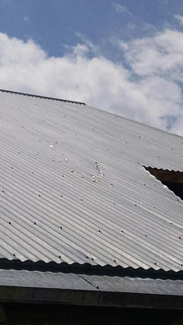 Exposed Fastener metal roof needing general maintenance with tightening screws.