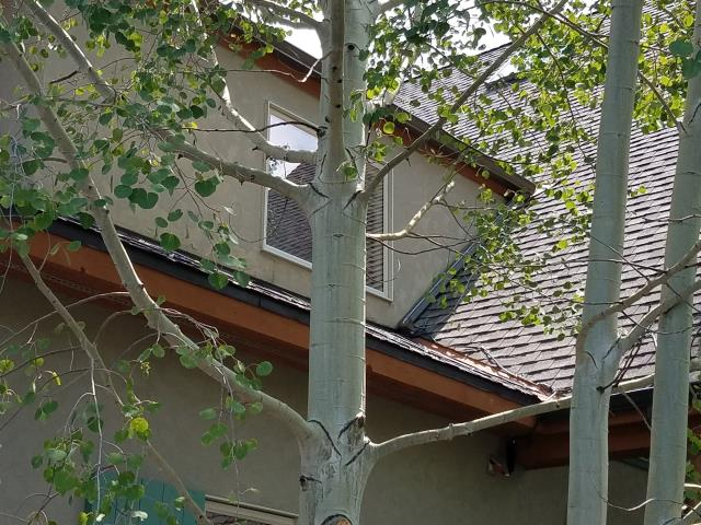 "Installed custom length 5"" K style seamless steel gutter and downspouts with self-regulating heat cable."