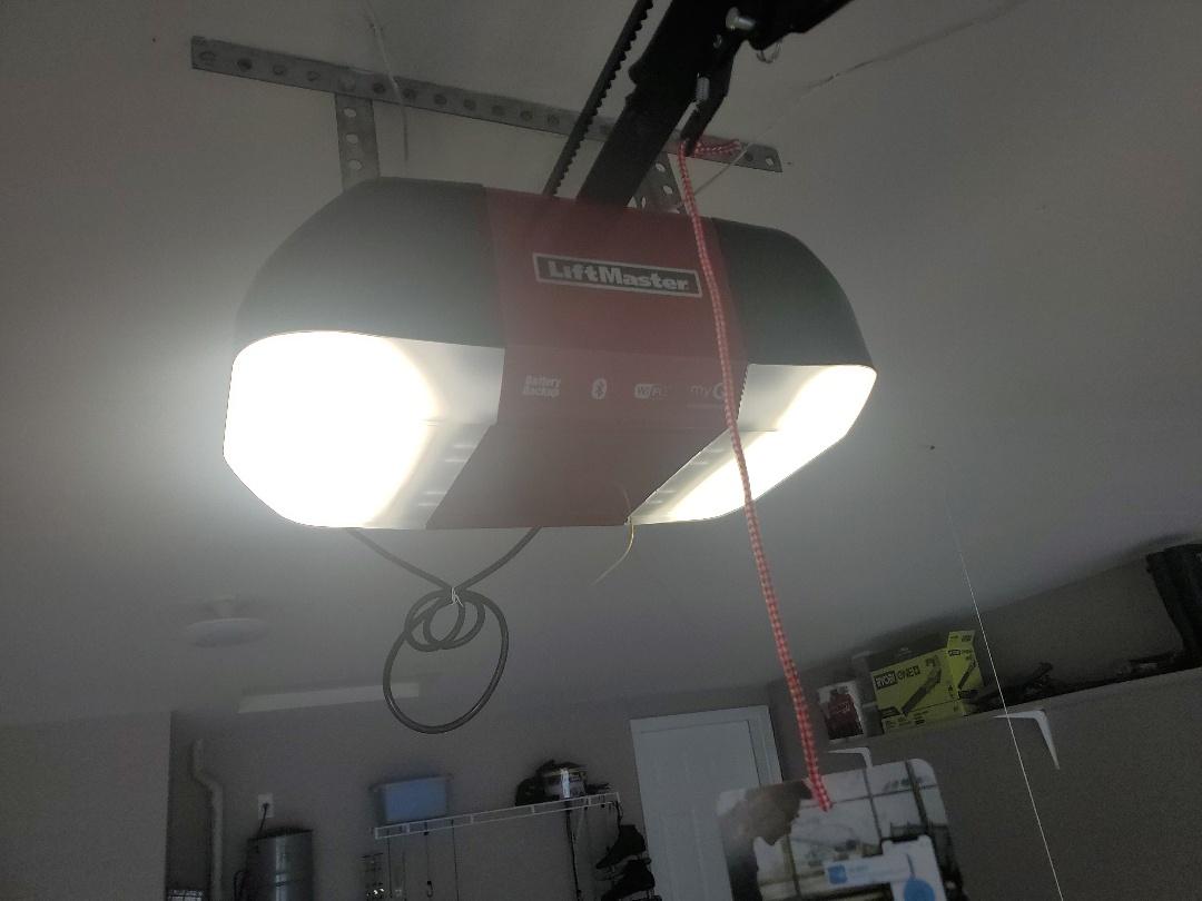 LiftMaster Professional repair with mascara Professional installation Eagan Minnesota