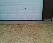 Stillwater, MN - Repaired bottom seal and astrogile garage door service