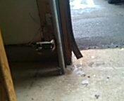 Farmington, MN - Garage door service repair safety sensors