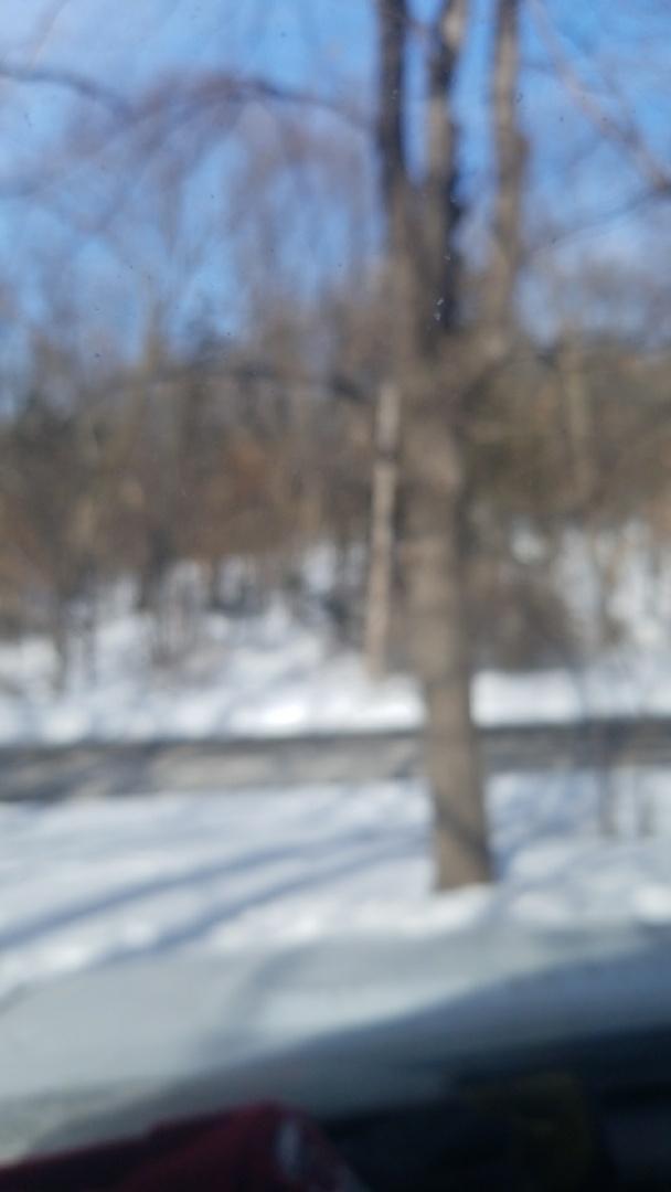 Prior Lake MN