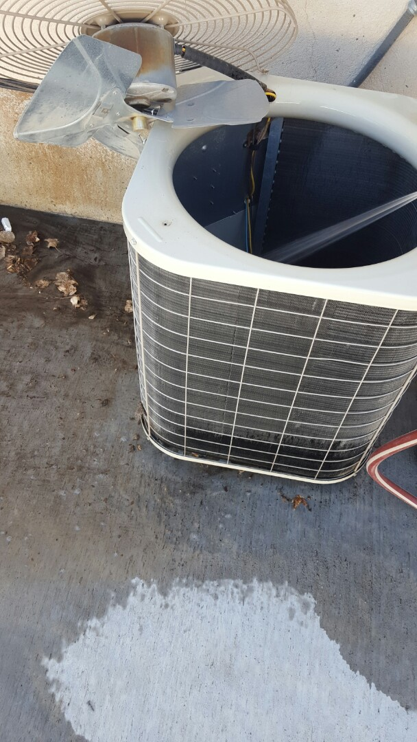 Pleasant Grove, UT - A/C tuneup and coil cleaning of the condensing unit.