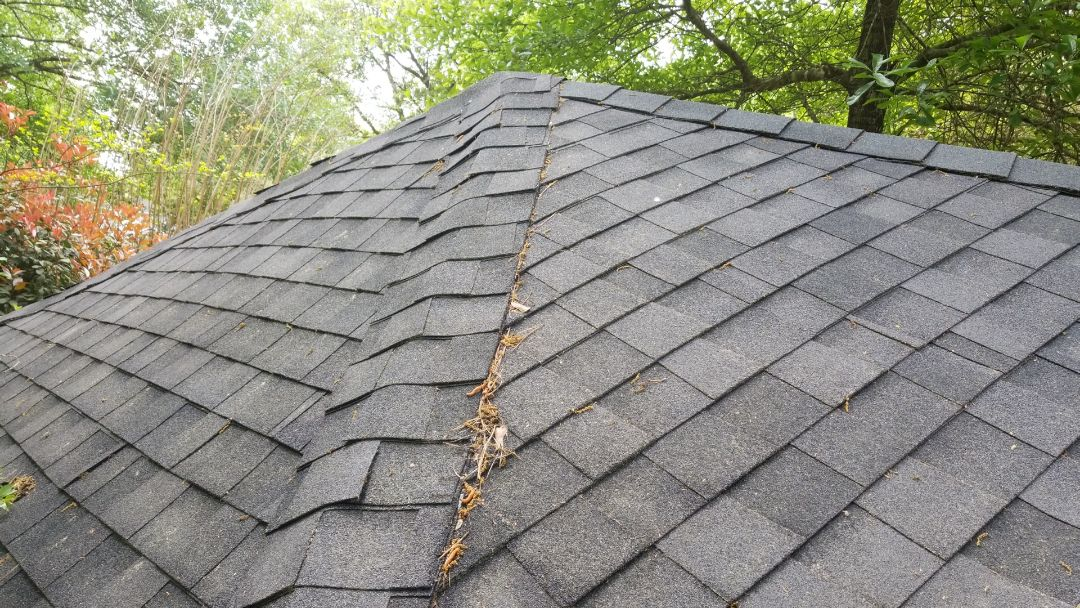 Spring, TX - Roof small shed CertainTeed Maxdef A/R Landmark, with synthetic underlayment