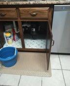 Memphis, TN - Clean kitchen drain and washing machine drain