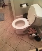 Tunica, MS - Unstopped toilet in residential.