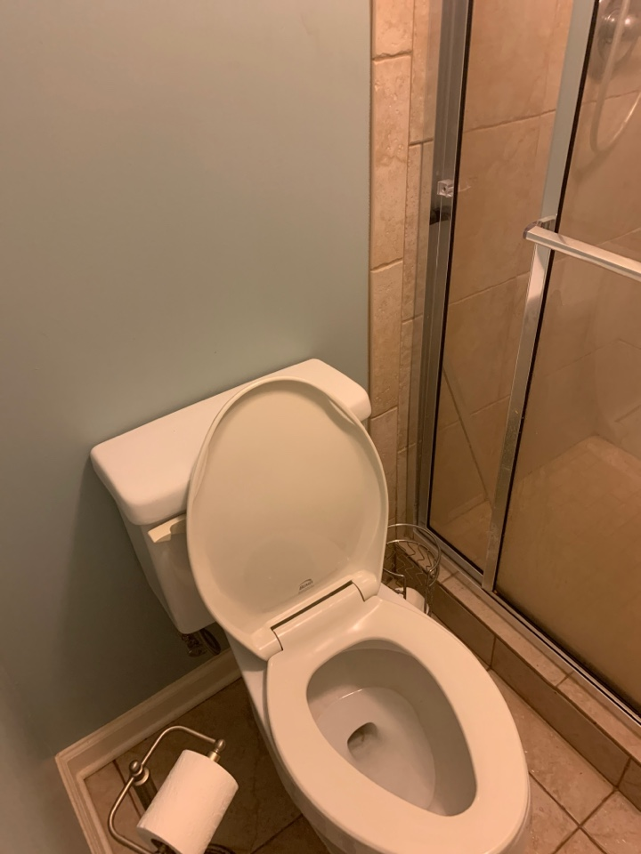 Olive Branch, MS - Unstopped toilet in quests bathroom