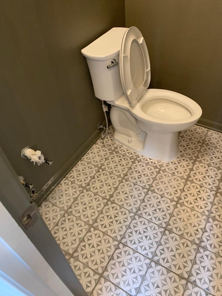 Hernando, MS - Install toilet