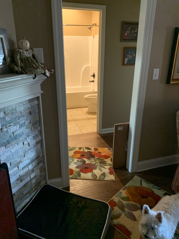 Southaven, MS - Unstopped tub and shower drain