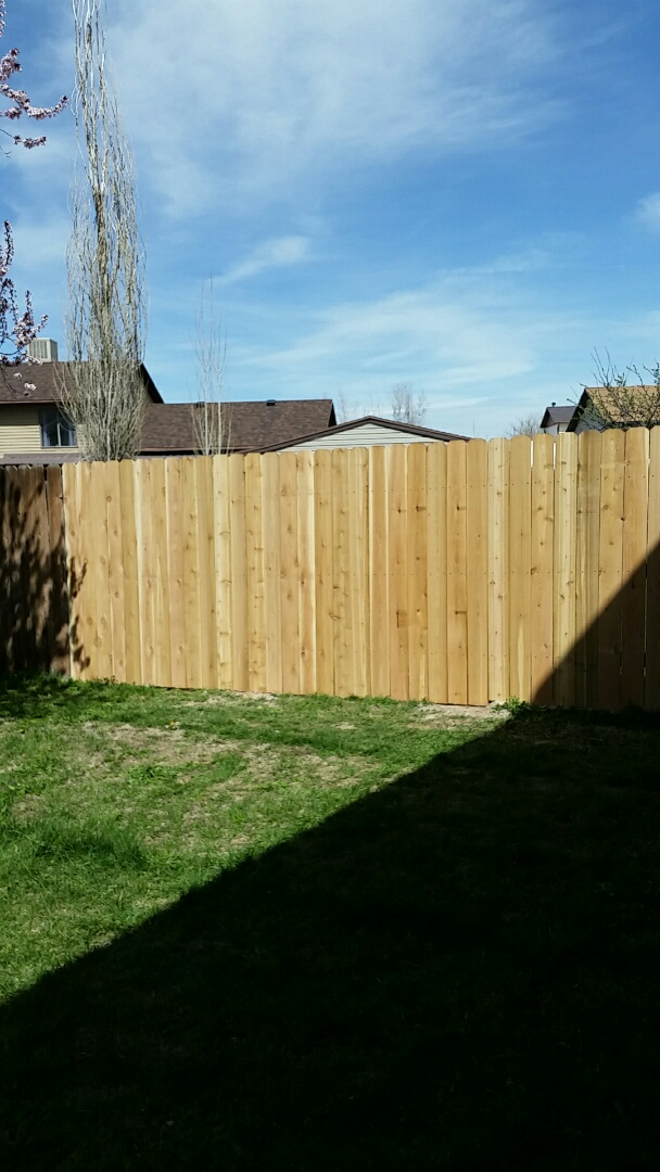 Repaired fence the new fence posts and put on new slats