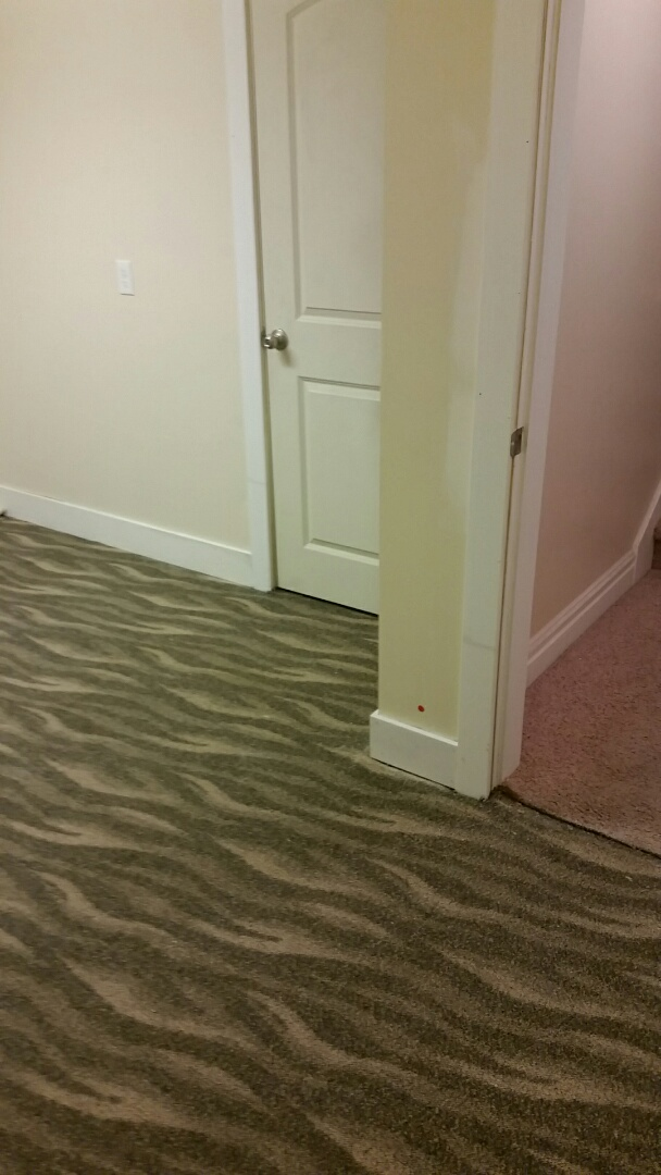 Installed Door Casing and Baseboards.  Due to Water Damage