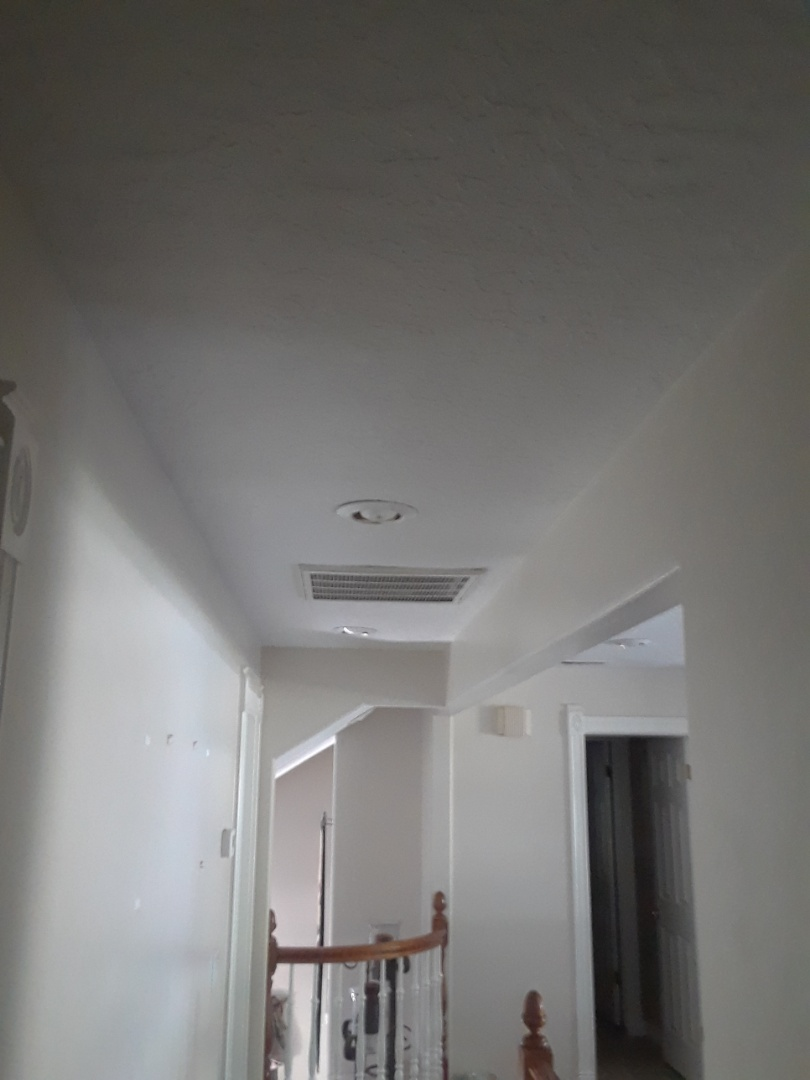 Primed, and painted hallway ceiling.